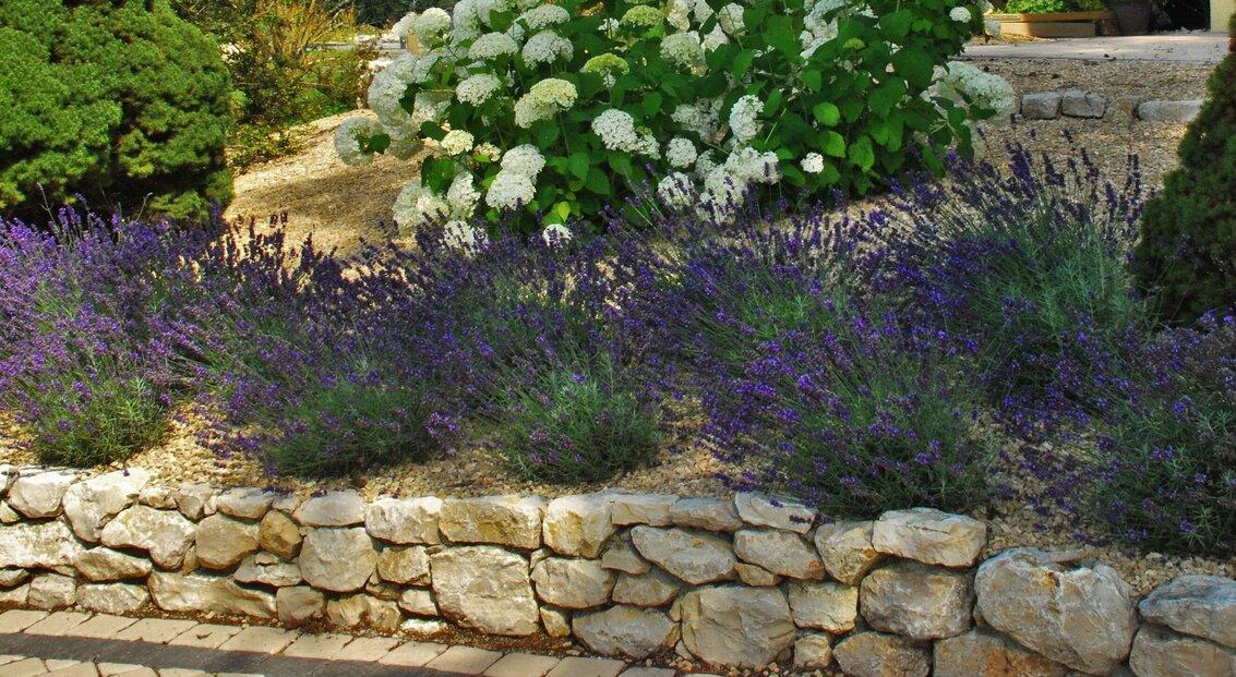 jardin_vivace_a_la_campagne_2