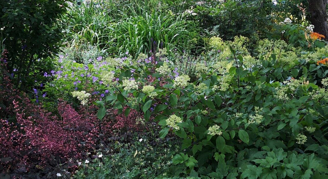 jardin_vivace_a_la_campagne_1