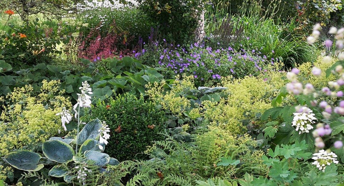 jardin_vivace_a_la_campagne_3