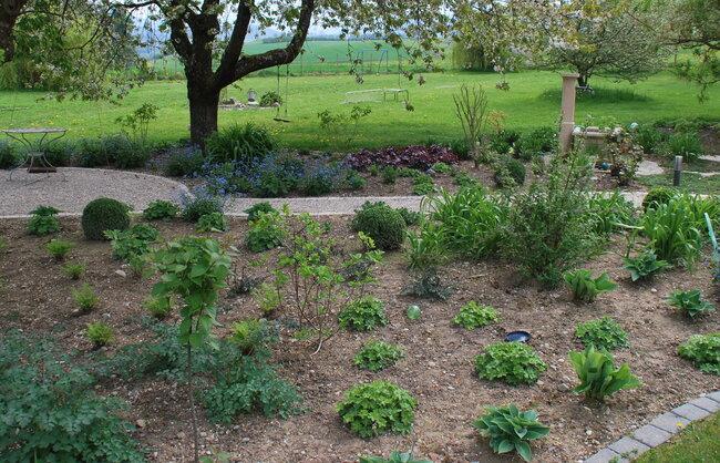 jardin_vivace_a_la_campagne_5