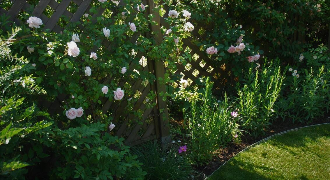 jardin_vivace_jardin_avec_vue_2