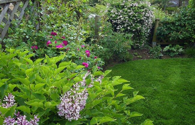 jardin_vivace_jardin_avec_vue_6