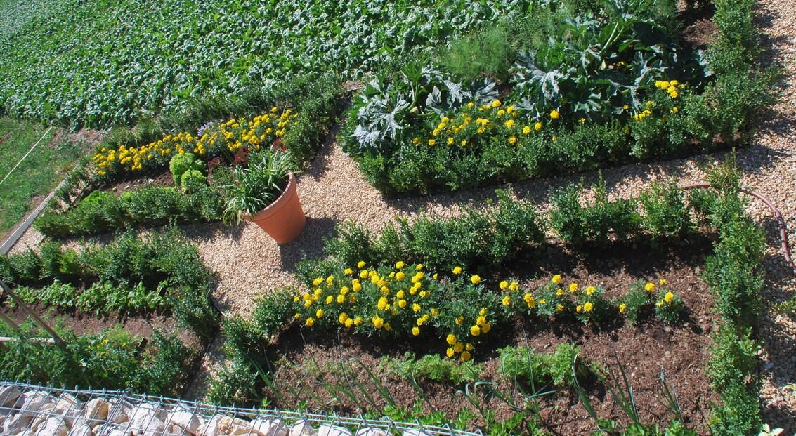 jardin_vivace_jardin_familial_3